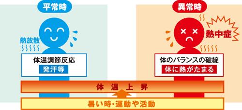 熱中症は体内に熱がこもり、体温が異常に上昇することで発症します